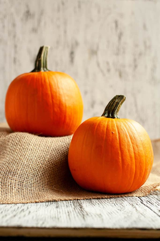 Fresh pumpkin puree and canned pumpkin face off in a blind taste test. Which was the winner? #pumpkin #pumpkinpie #pumpkinrecipes #desserts #pumpkindessert #dessertrecipes #thanksgivingrecipes